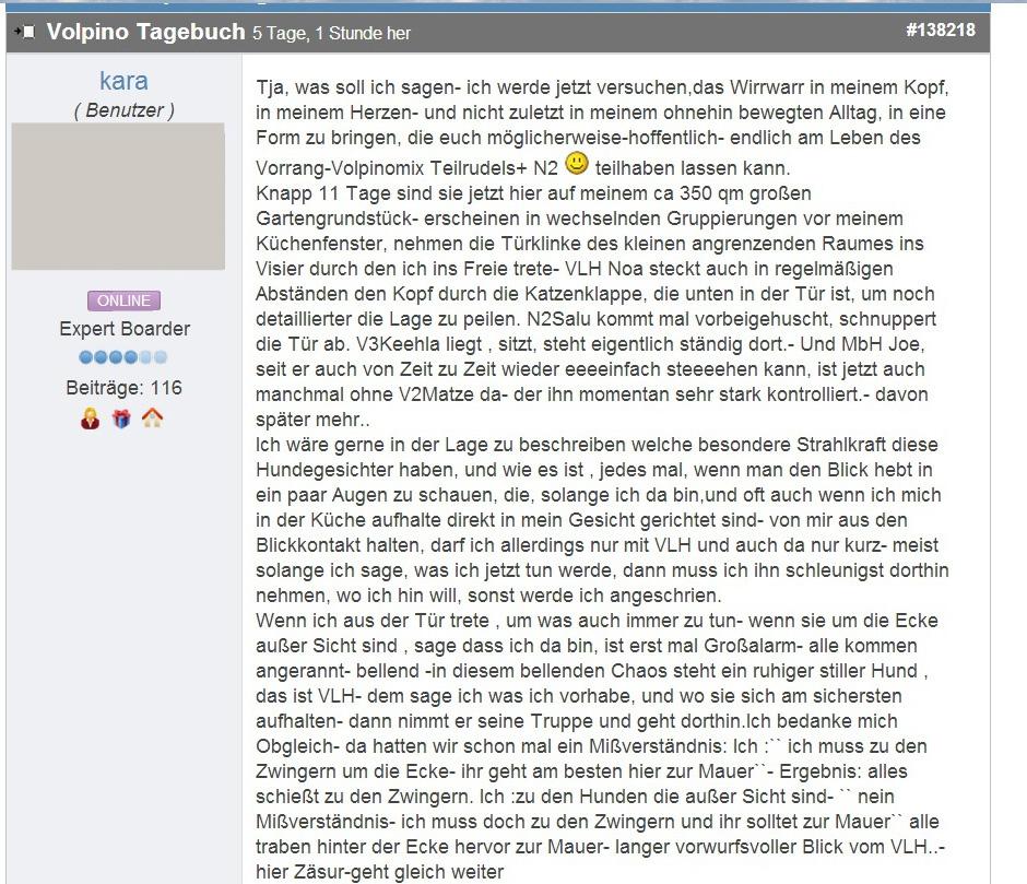 Volpino_Tagebuch_01 copy