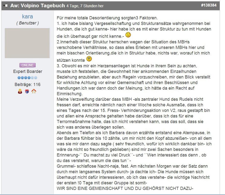 Volpino_Tagebuch_03 copy