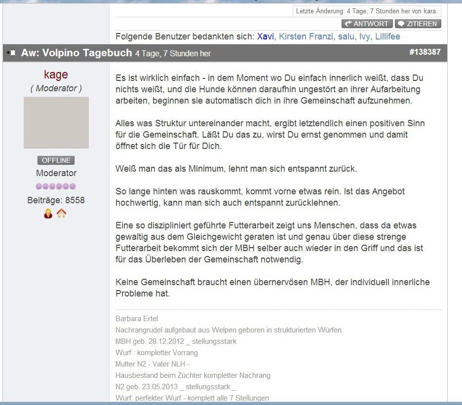 Volpino_Tagebuch_05 copy