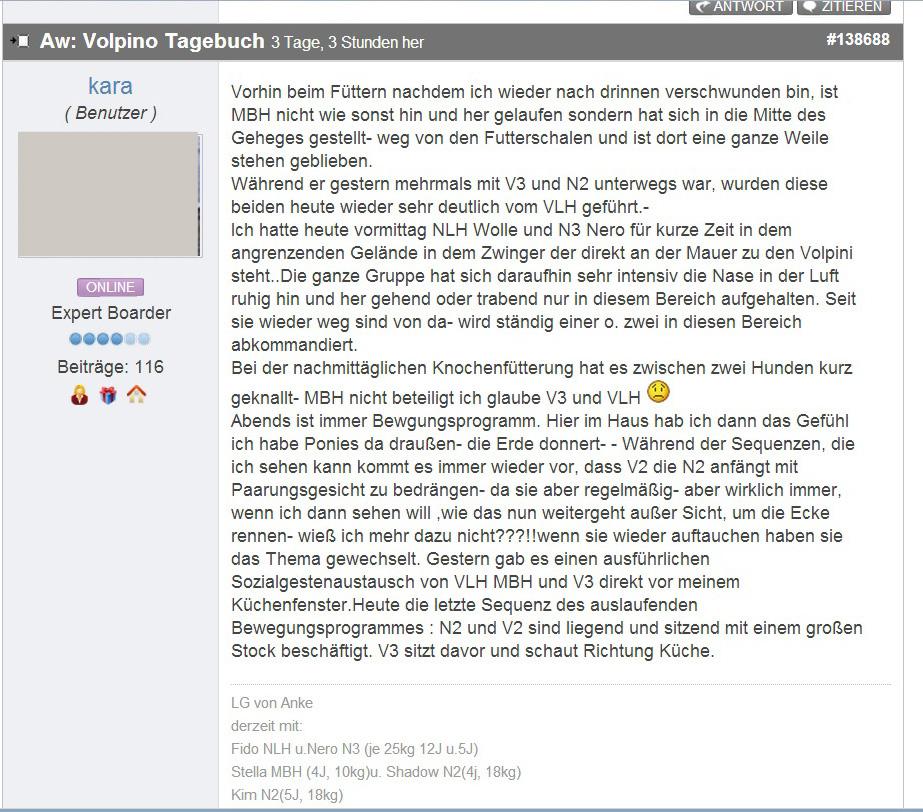 Volpino_Tagebuch_06 copy